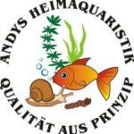 Sorge für neues Leben in Deinem Aquarium mit Aquariumschnecken